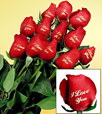 Valentines Roses on Send Flowers Online  Roses  Glendale Florist  Hollywood  Los Angeles